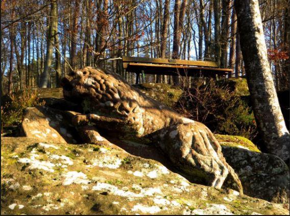 Capture lion de lutzelbourg